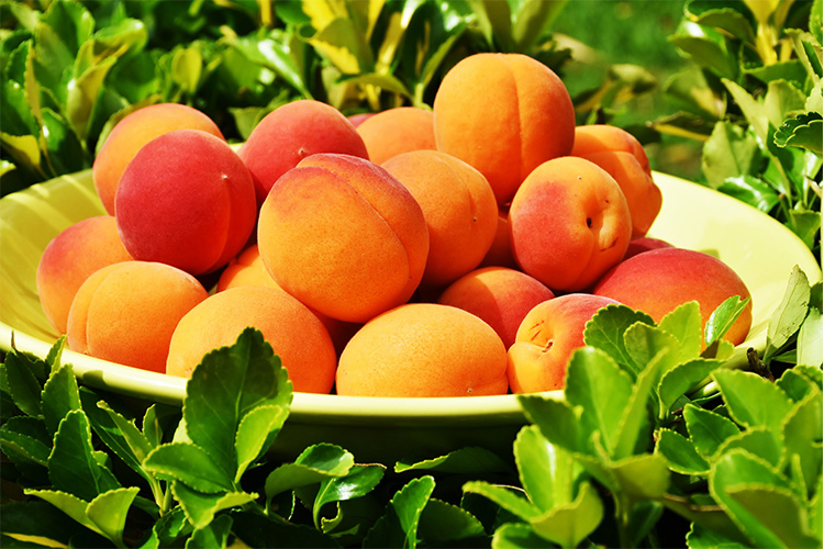 Living Loving Local for August: Peaches